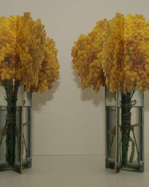gele-bloemen-scaled.jpg
